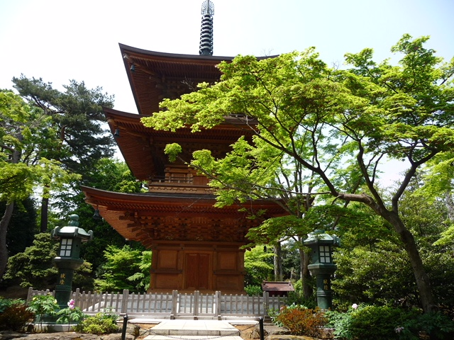 Gotoku ji Tempel Glückskatze